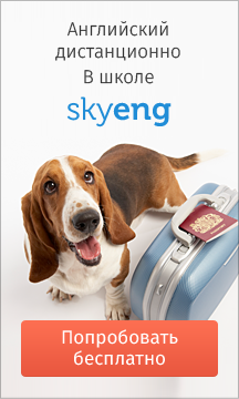 собака с чемоданом