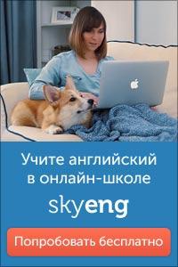 женщина с собакой за ноутбуком