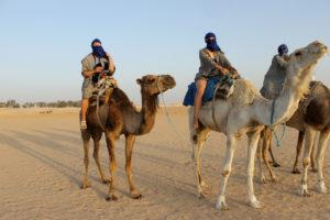 люди на верблюдах