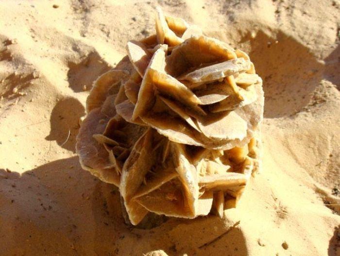 минерал роза пустыни