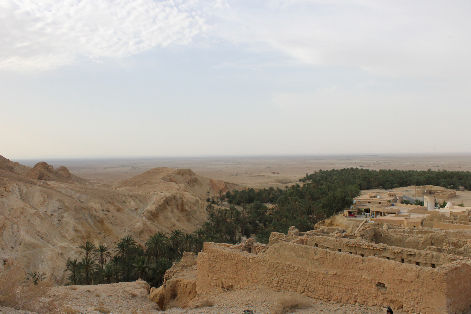 руины в оазисе