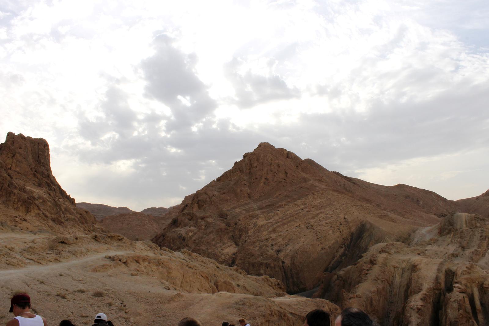 горы в оазисе