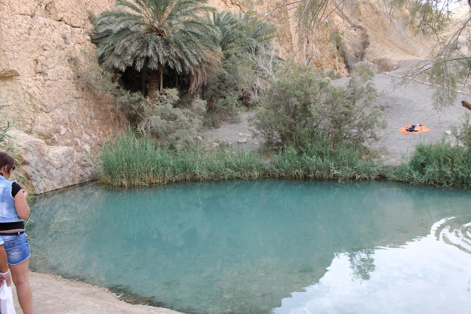 озеро в оазисе