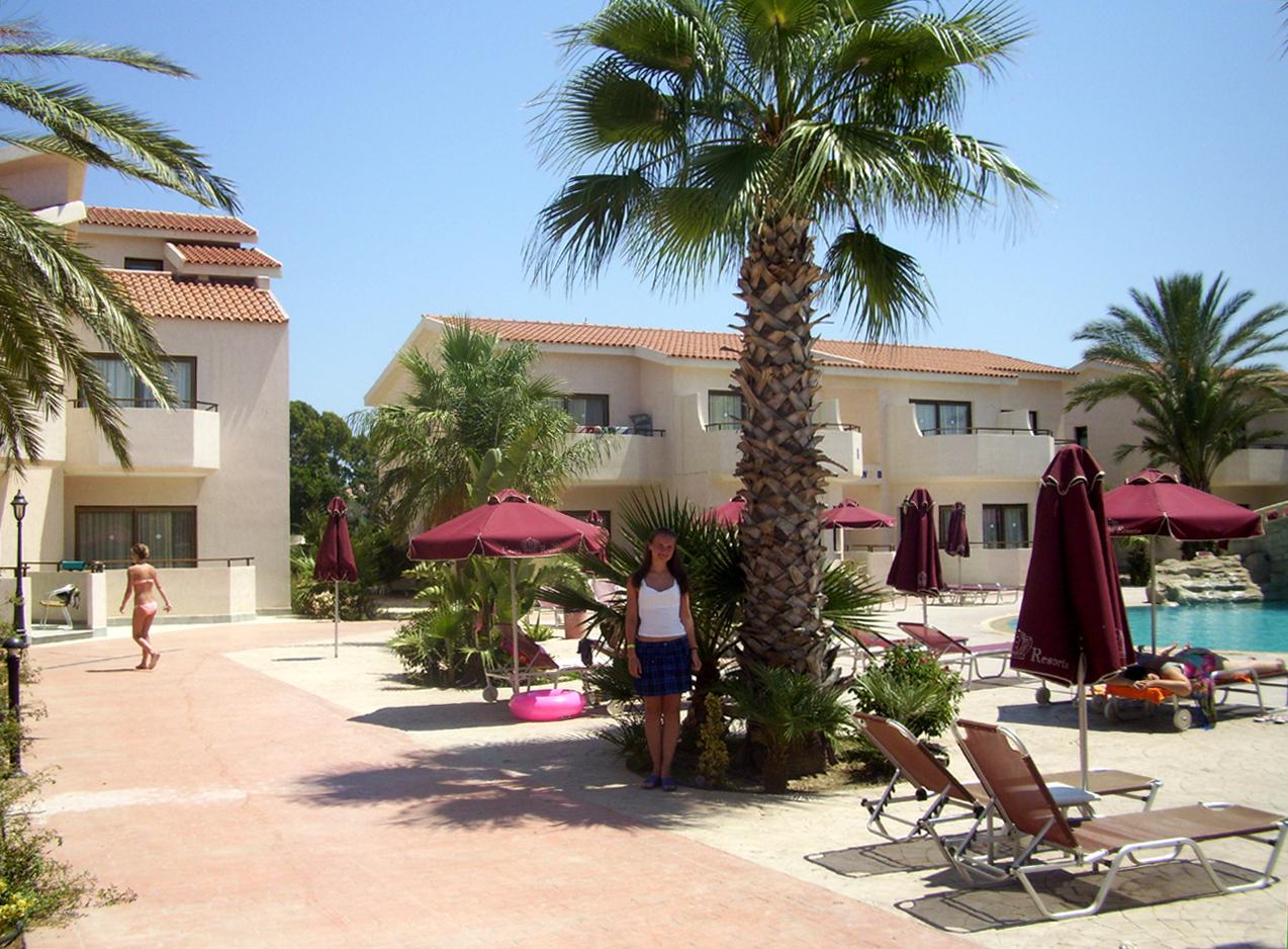пальма бассейн шезлонги