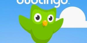 Учим язык с нуля вместе с Duolingo