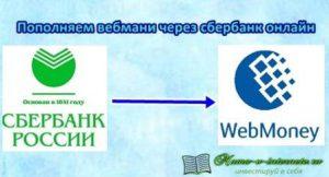 пополняем вебмани через сбербанк онлайн